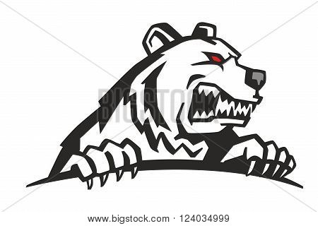 vector Angry Bear Head on white background
