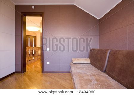 modern luxury interior - hall with the sofa and door