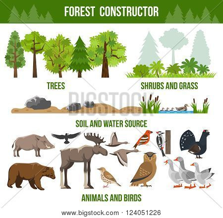 Forest constructor poster with trees shrubs and grass animals and birds source packs flat isolated vector illustration