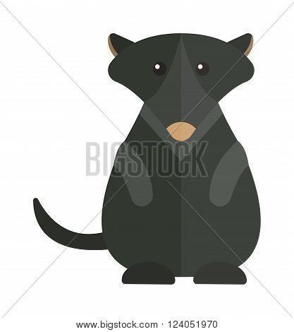 Australia groundhog mammal animal and Australia groundhog coming sprig holiday symbol. Cute Australia groundhog funny cartoon character of marmot flat vector illustration.
