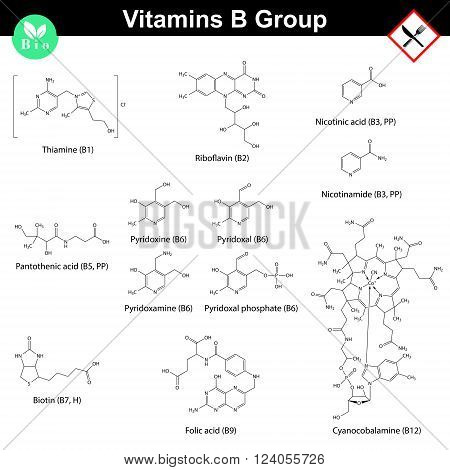 Vitamins of b group molecular structures, 2d vector chemical formulas, eps 8