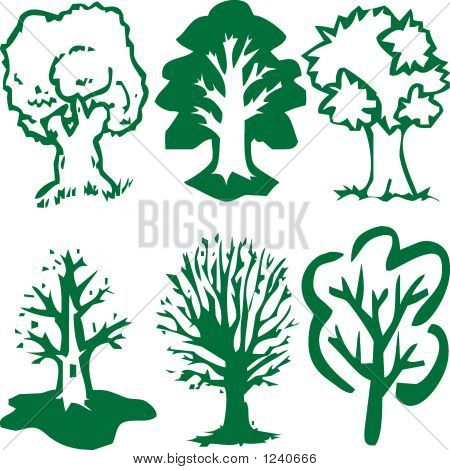 Trees Of Green