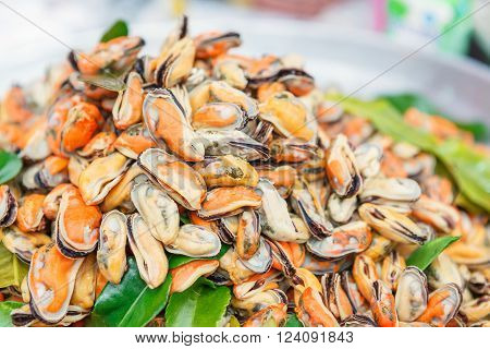 Mussel in seafood market stall for design.
