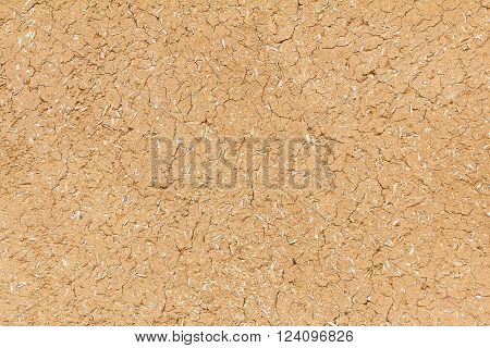 Cracked soil dry earth texture or cracked soil background. Crack soil on dry season. Top view shot of cracked soil. Cracked clay ground into the dry season for background and design.