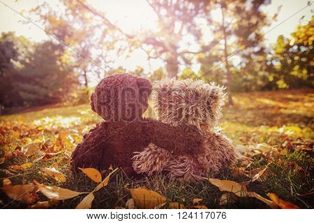 Two stuffed bears with their arms around each other