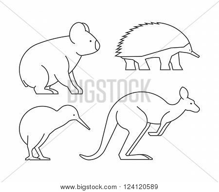 Vector line set of australian animals. Linear icon koalas kangaroos echidnas and kiwi.