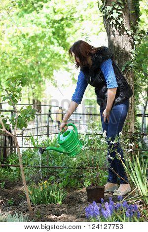 Casual dressed woman in yard gardening waters flowers