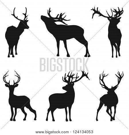 Silhouette deer on white background - vector illustration