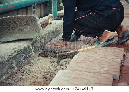 Worker laying paver bricks paver making sidewalk