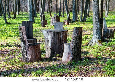 Table and chairs made of wood trunk stumps. Place for rest.