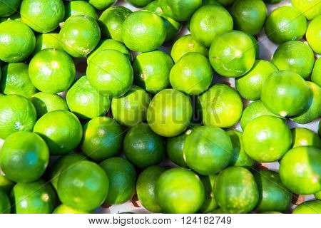 Fresh lime fruit from the bed of garden