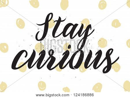 Stay Curious Inscription. Greeting Card With Calligraphy. Hand Drawn Design. Black And White.