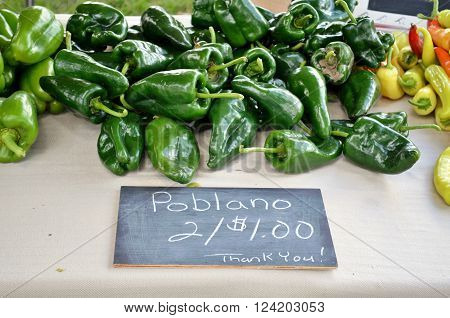 Fresh Poblano Peppers displayed for sale at a food market
