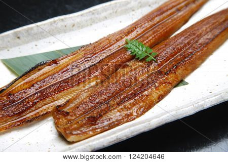 close up shot of  Japanese grilled eel