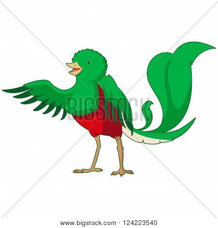 Vector image of the  Cartoon smiling Quetzal