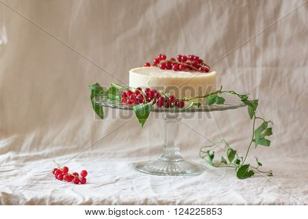 Cake With Redcurrant