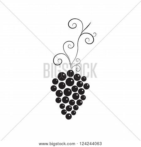 Vine with bunch of grapes. Black and white simple design. Logo for winery wine store wine menu. Round purple grapes. Healthy eating. Vitamins for health. Vector illustration.