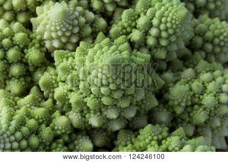 Cauliflower Romanesco Broccoli