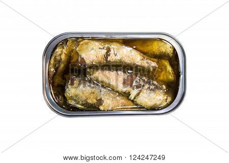 Opened Can With Sardines Fish Isolated With Clipping Path