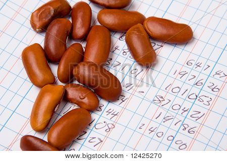 Accounting Ledger Book, Numbers, Pile Bean Counter