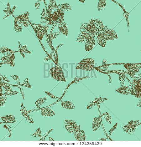 Seamless floral pattern with peppermint sprigs. Fresh subtle nature colors