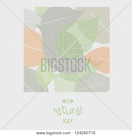 Background with leaves pattern as a concept of natural products