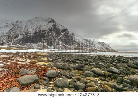 Scenic pebble beach in Eggum Lofoten Islands Arctic Norway Scandinavia Europe on a cloudy winter day. poster