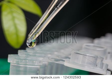 Close-up of micro centrifuge tube in front of green leaf
