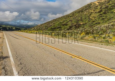 Asphalt road alongside a green hillside in southern California.