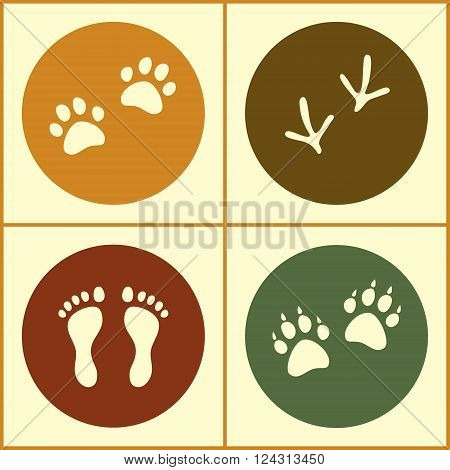 Human and bird feet, cat and dog paws colored flat icons set, vector collection