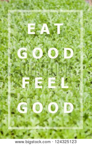Eat good feel good inspirational quote on vegetable background