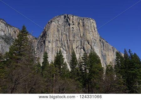 El Capitan in Yosemite National Park in Spring with blue sky