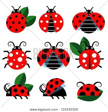 Ladybug icons. Cute ladybugs funny insect vector on white