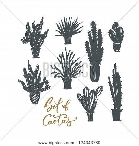 Set of cactus in a pot. Ink illustration. Hand drawn nature elements. Isolated on white background. Vector illustration of a cactus isolated on a white background. Cactus in a pot.