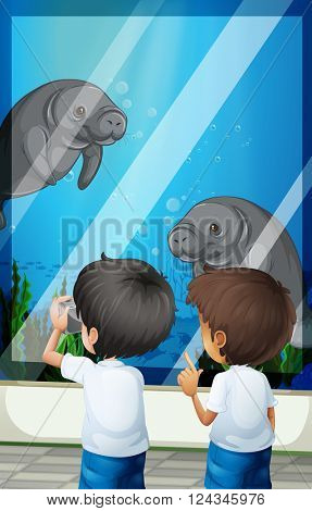 Students looking at seacows from fishtank illustration