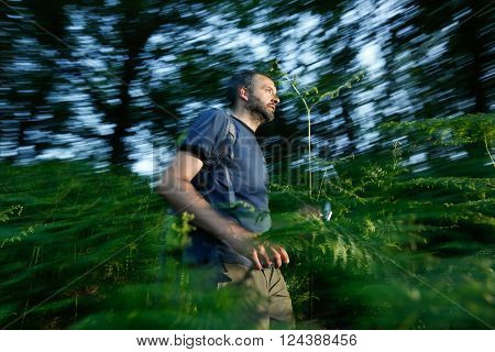 Lost man running through the woods trying to find a way out. Orientation fear and survival activity in nature concept.