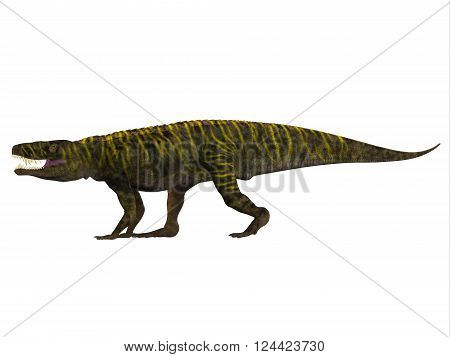 Batrachotomus Side Profile 3D illustration - Batrachotomus was a carnivorous archosaur predator that lived in Germany during the Triassic Period. poster