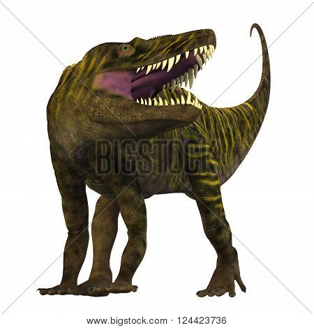 Batrachotomus on White 3D illustration - Batrachotomus was a carnivorous archosaur predator that lived in Germany during the Triassic Period.