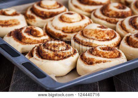 Raw cinnamon rolls. Preparation process - unbaked dough waiting before baking