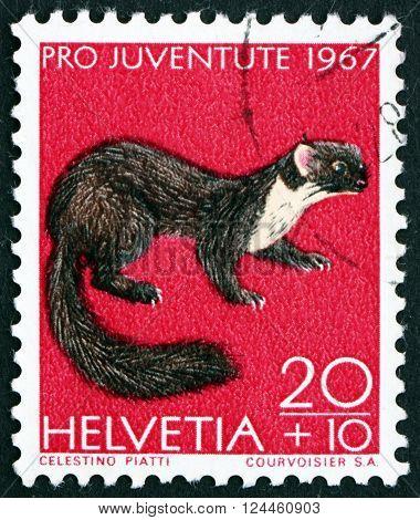 SWITZERLAND - CIRCA 1967: a stamp printed in the Switzerland shows Pine Marten Martes Martes Animal circa 1967
