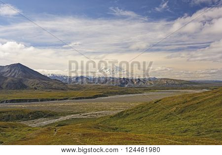 Denali Peaking out of the Clouds across the Tundra in Denali National Park in Alaska