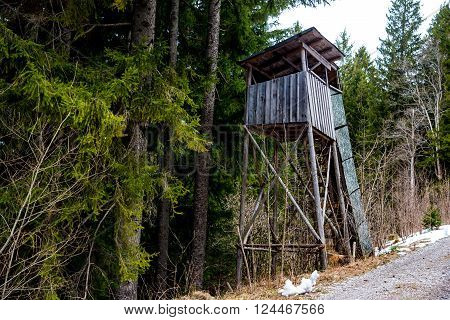 An elevated wooden platform known as Tree stand or Deer stand in the forest for hunters to have a better sight