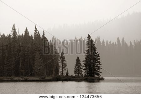 Forest and lake in a foggy day in Banff National Park