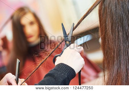professional hair stylist with scissors and comb