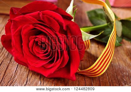 a red rose with the Catalan flag on a rustic wooden table and some old books in the background, for the Saint George Day celebrated in Catalonia, Spain, where is tradition to give roses and books