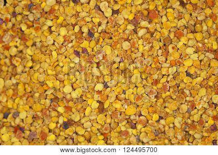 Macro detail of pollen