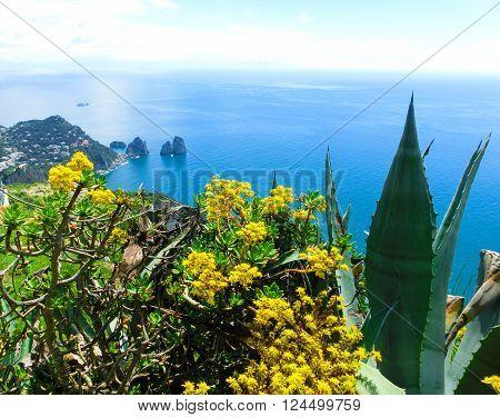Capri island, Italy.Capri is an island in the Tyrrhenian Sea near Naples.