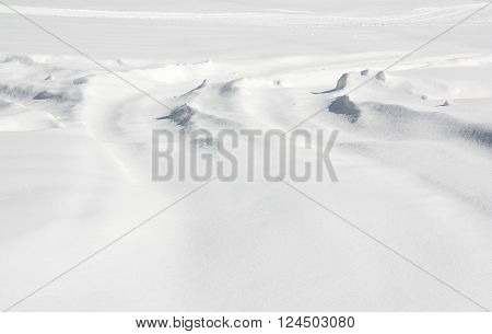 New Snow Fall - Snow Ground in a vast landscape