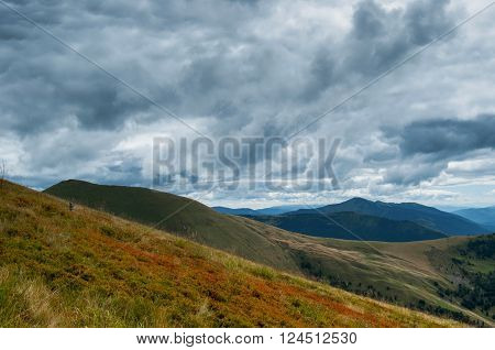 Dark before rain in Carpathian mountains low clouds and colorful slopes of red berries
