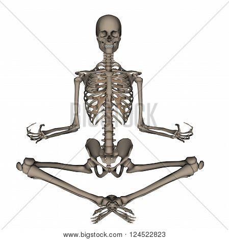 Frontview of human skeleton meditation isolated in white background - 3D render
